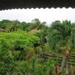 Finca Magdalena, Ometepe, Nicaragua