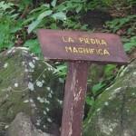 Petroglyphs, Ometepe Island, Nicaragua